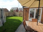 Thumbnail to rent in Clement Way, Willington, Crook