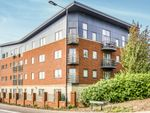 Thumbnail to rent in York Road, Doncaster