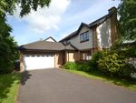 Thumbnail to rent in Annfield Gardens, Stirling