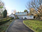 Thumbnail to rent in The Willows, Borough Green Road, Ightham, Sevenoaks