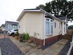 Thumbnail for sale in Oakleigh Park, Clacton Road, Weeley