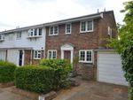Thumbnail to rent in Waldegrave Park, Twickenham