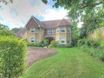 Thumbnail for sale in Delamer Road, Bowdon, Altrincham