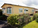 Thumbnail to rent in Gwealmayowe Park, Helston