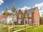 """Thumbnail to rent in """"Holden"""" at Trowbridge Road, Westbury"""