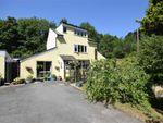 Thumbnail to rent in Brook Cottage, Mochdre Lane, Mochdre Lane, Newtown, Powys