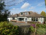 Thumbnail for sale in Hardwick Lane, Bury St. Edmunds