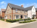 Thumbnail for sale in Verbena Drive, Angmering, West Sussex