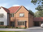 "Thumbnail to rent in ""The Ottringham"" at Steeplechase Way, Market Harborough"
