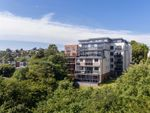 Thumbnail to rent in Asheldon Road, Torquay
