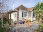 Thumbnail for sale in Baywood Gardens, Brighton