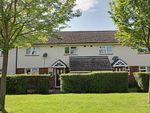 Thumbnail for sale in Belle Isle Crescent, Brampton, Huntingdon