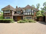 Thumbnail to rent in Badgers Hill, Wentworth, Virginia Water