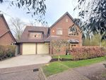 Thumbnail for sale in Water Meadow Way, Wendover, Buckinghamshire