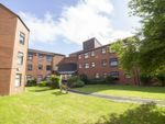 Thumbnail to rent in St Pauls Court, Stockton On Tees
