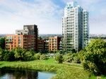 Thumbnail to rent in Woodberry Grove, Finsbury Park
