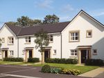 """Thumbnail to rent in """"The Coleford"""" at Castlehill Crescent, Ferniegair, Hamilton"""