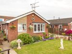 Thumbnail to rent in The Meadows, Burringham, North Lincolnshire