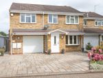 Thumbnail for sale in Chillenden Court, Totton, Southampton