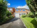 Thumbnail for sale in Stirling Court, Briercliffe, Lancashire