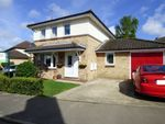 Thumbnail for sale in Cranfield Place, Somersham, Huntingdon