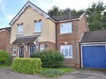 Thumbnail to rent in Old Bourne Way, Great Ashby, Stevenage, Herts