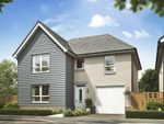 "Thumbnail to rent in ""Falkland"" at East Calder, Livingston"