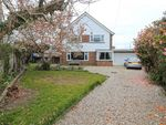Thumbnail for sale in Collington Lane West, Bexhill On Sea, East Sussex