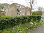 Thumbnail to rent in Lister Lane, Bradford