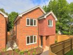 Thumbnail to rent in Holly Close, St. Julians Road, St Albans, Hertfordshire