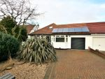 Thumbnail for sale in Jenkins Avenue, Bricket Wood, St. Albans