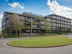 Thumbnail to rent in Belvedere House, Basingstoke