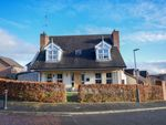 Thumbnail to rent in The Priory, Dromore