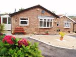 Thumbnail for sale in Shirley Close, Barry