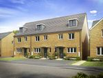 """Thumbnail to rent in """"The Leicester"""" at Brickburn Close, Hampton Centre, Peterborough"""