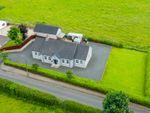 Thumbnail to rent in 89A Ballynease Road, Portglenone