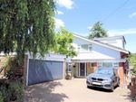 Thumbnail to rent in Kendal Avenue, Epping, Essex