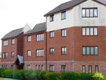 Thumbnail to rent in Longdales Avenue, Falkirk
