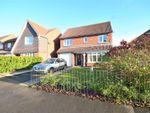 Thumbnail to rent in Aylesford Mews, Greystoke Manor, Sunderland