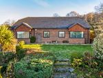 Thumbnail for sale in Shootash, Romsey, Hampshire