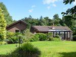 Thumbnail for sale in Eagle Drive, Longridge, Berwick-Upon-Tweed