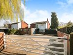 Thumbnail for sale in Nazeing Road, Nazeing, Waltham Abbey