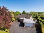 Thumbnail to rent in Fulwith Grove, Harrogate, North Yorkshire