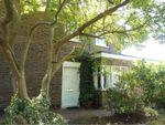 Thumbnail for sale in Rutland Road, Maidenhead