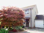 Thumbnail for sale in East Allington, Totnes