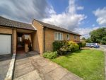 Thumbnail for sale in Whitmead Close, South Croydon