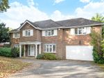 Thumbnail for sale in Homestead Road, Chelsfield Park, Orpington