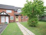 Thumbnail to rent in Dewfalls Drive, Bradley Stoke, Bristol