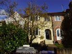 Thumbnail to rent in Neasden /Cricklewood, Dollis Hill Lane, London