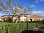 Thumbnail to rent in Harvey Road, Aylesbury